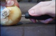 How To Charge An Ipod Using Electrolytes And An Onion