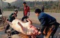 Incredible China Rural Life