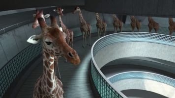 The Amazing High Diving Giraffes