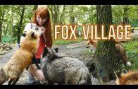 The Fox Village in Zao, Japan