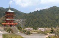 Nachi Temple & Waterfall In Japan